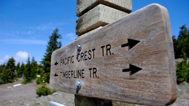 """Pacific Crest Trail Expects More Hikers Thanks to """"Wild"""""""