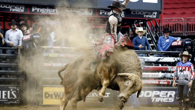 Bull Rider Dies After Being Stomped in Denver Competition