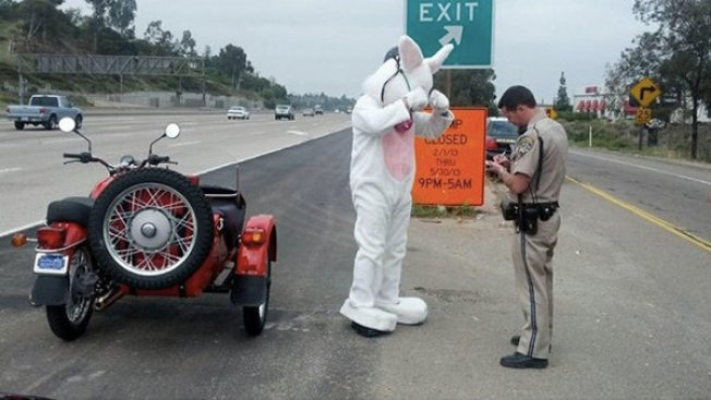 Easter Bunny Pulled Over for Driving Motorcycle without Helmet