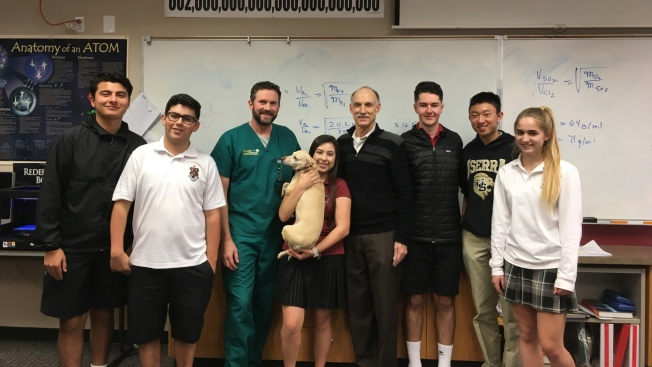 High School Students Build Prosthetic Leg For Three Legged Dog Nbc