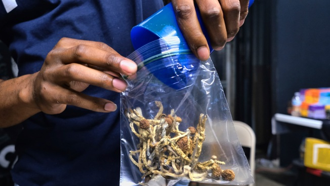Oakland Becomes 2nd US City to Decriminalize Magic Mushrooms