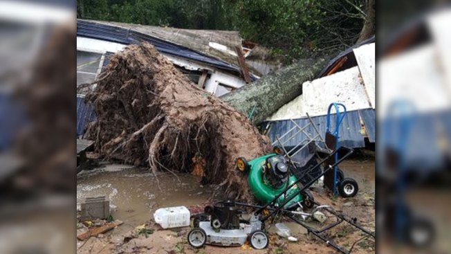 Sleeping Woman Killed When Tree Topples Onto Mobile Home
