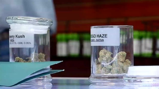 San Diego's First Legal Medical Pot Shop Opens Doors
