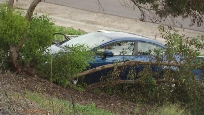 Driver Without Seat Belt Crashes Into Tree in Spring Valley, Dies