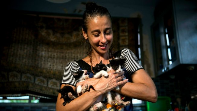 Animal Activists to March in Cuba's Capital, Marking Possible First