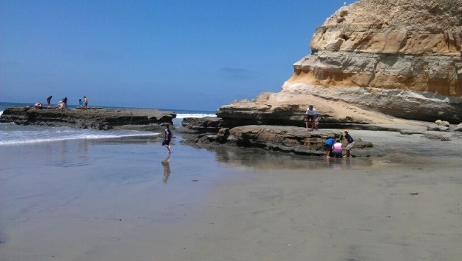 Beaches in Torrey Pines Contaminated