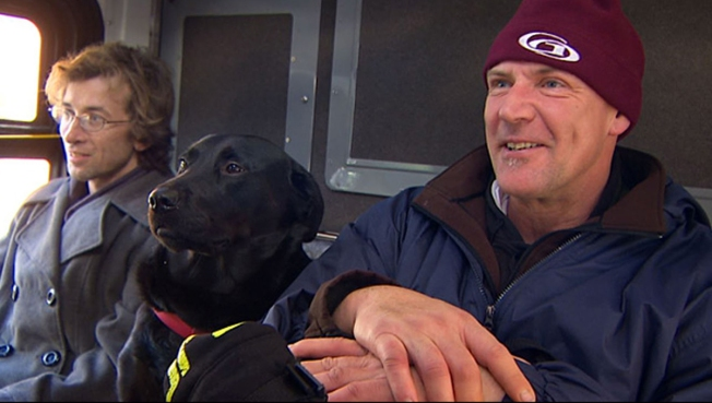 Black Lab Takes Solo Bus Rides to Dog Park Stop