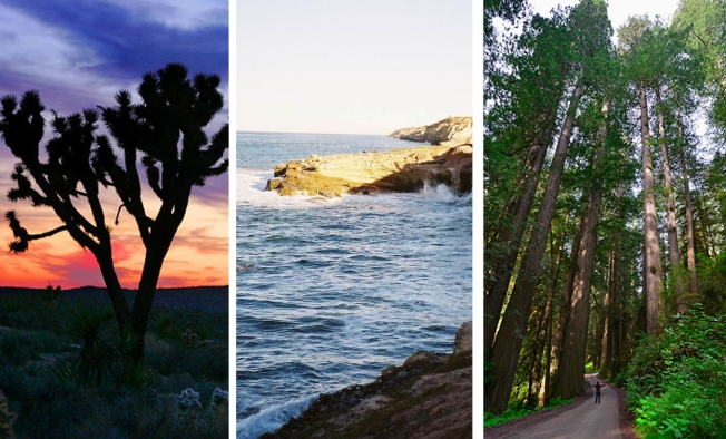 [LA GALLERY] Photos: Celebrate the Natural Splendor of National Parks in California