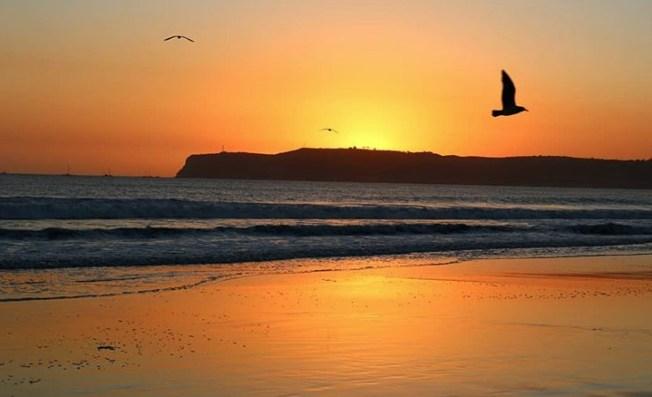 Coronado Beach Among Top Ten Beaches in U.S., According to Dr. Beach's Best Beaches List