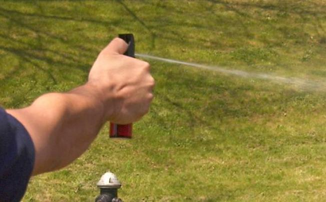 Groups Seek Probe into Pepper Spray Use