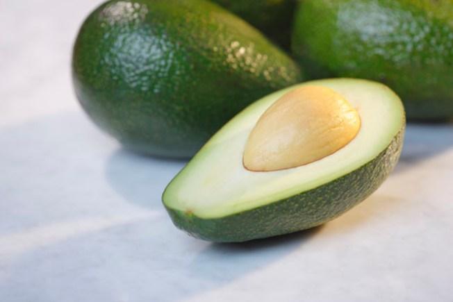 Fruit Fly Hanky-Panky Could Threaten Avocado Crop