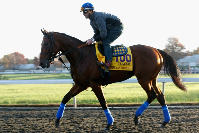 Final Ride of American Pharoah