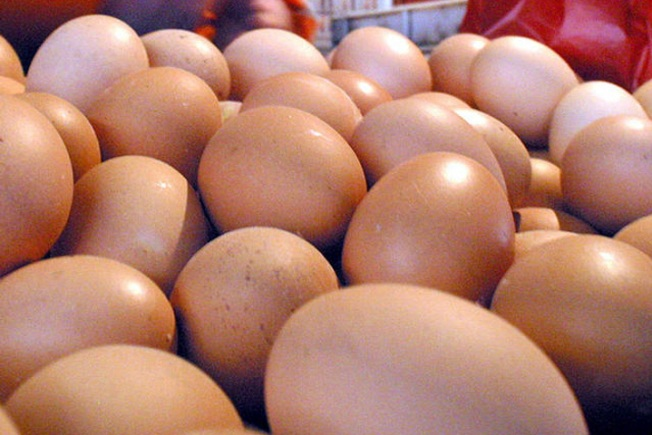 Rotten Eggs Get Men Hot