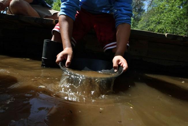 Study: Gold Rush-Era Mercury Flowing Downstream