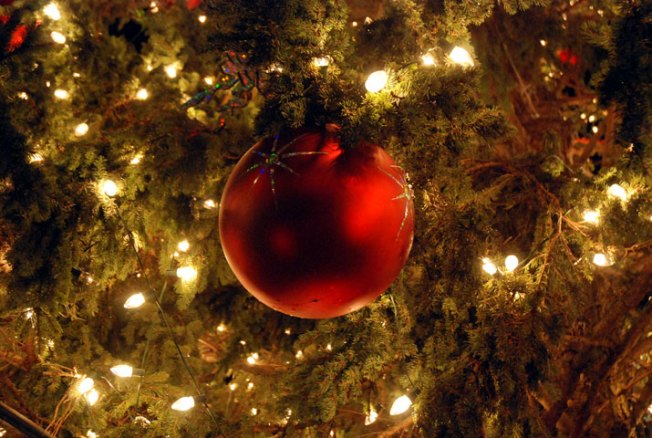 Camp Pendleton to Host Tree Lighting Ceremony