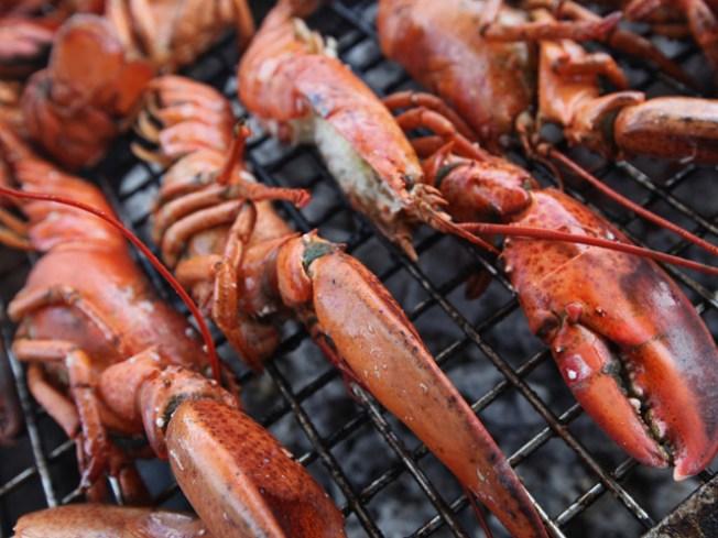 It's Lobster Season