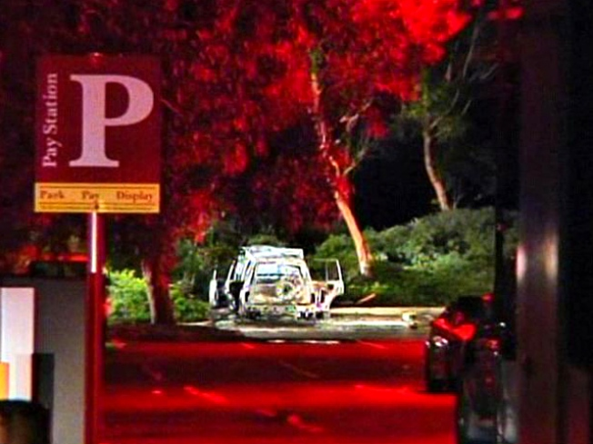 Woman Found Dead in Burning Vehicle at UCSD