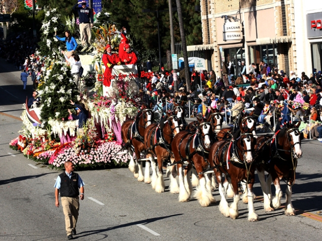 Anheuser-Busch Clydesdales Absent From Rose Parade After 58 Years