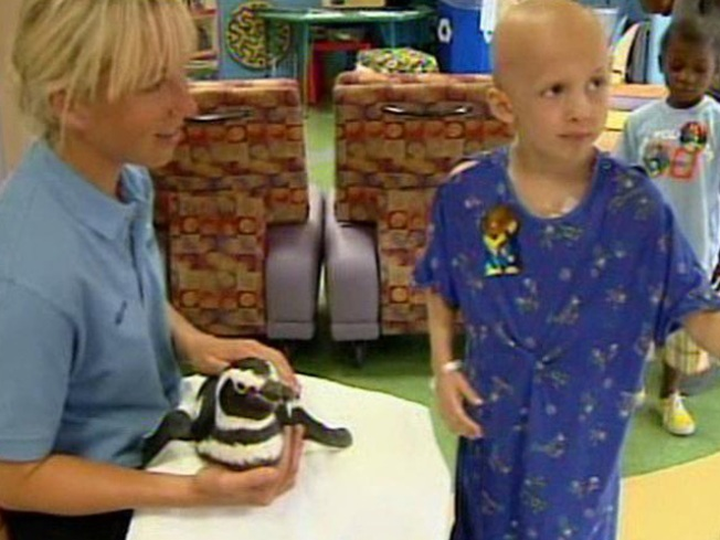 Penguins Lead March at Rady Children's Hospital