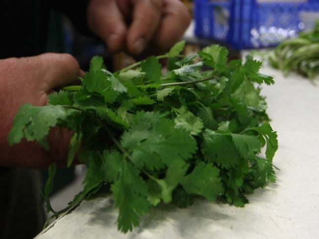 Do You Have Cilantro in Your Fridge?