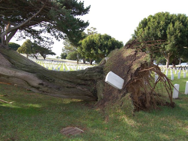 Historic Cemetery Suffers Storm Damage