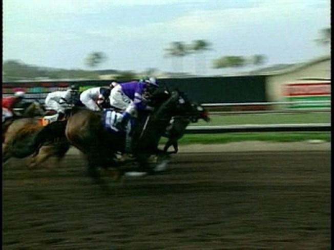 Lucky Bidder Wins $1 Million at Race Tracks