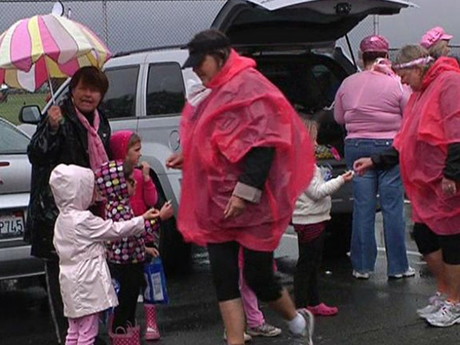 A Sea Of Pink: The Walk for the Cure