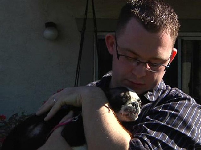 U.S. Marine Left With Sick Puppy