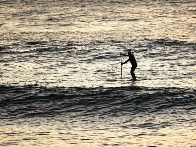 Shark Bites into Maui Man's Paddleboard