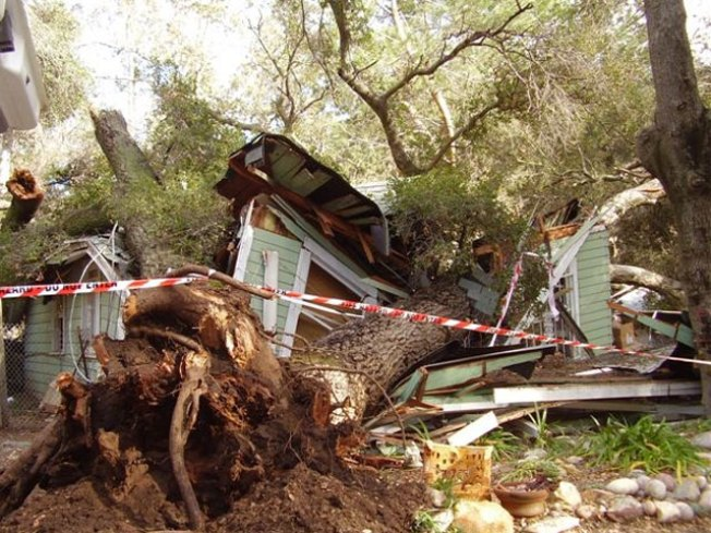 Tree Crushes Ramona Home