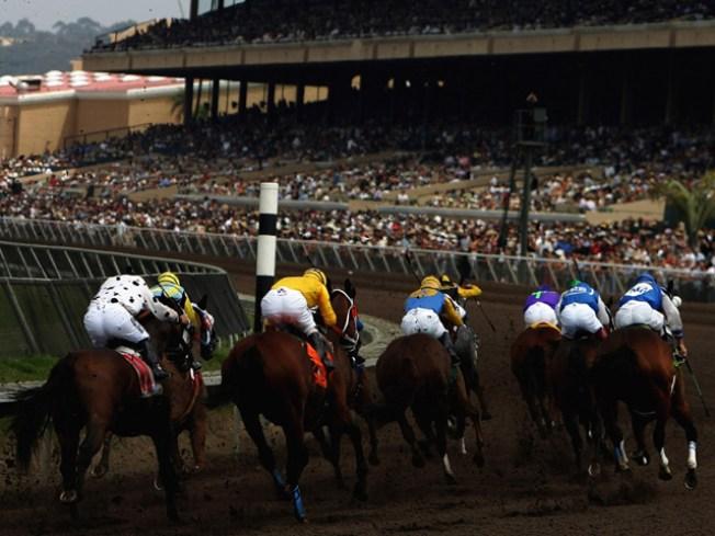 Jockey Injured on Racetrack