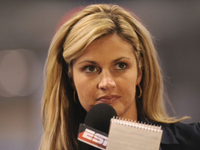 Man Pleads Guilty in Erin Andrews Stalking Case