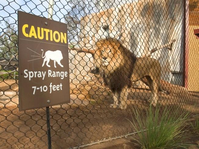 California S Nastiest Tourist Attraction Nbc 7 San Diego