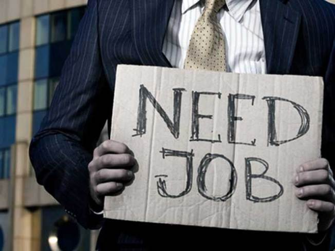 Local Labor Market Shows Steady Growth
