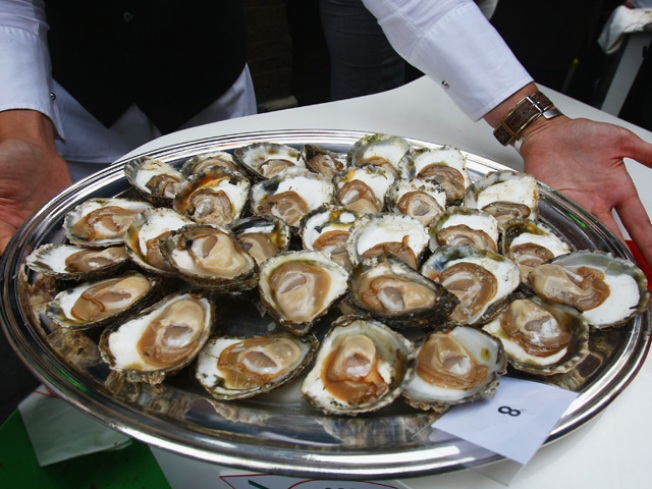Shuck and Suck at Oyster Fest