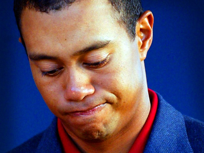 Tiger Woods Was Drinking Before Crash: Report
