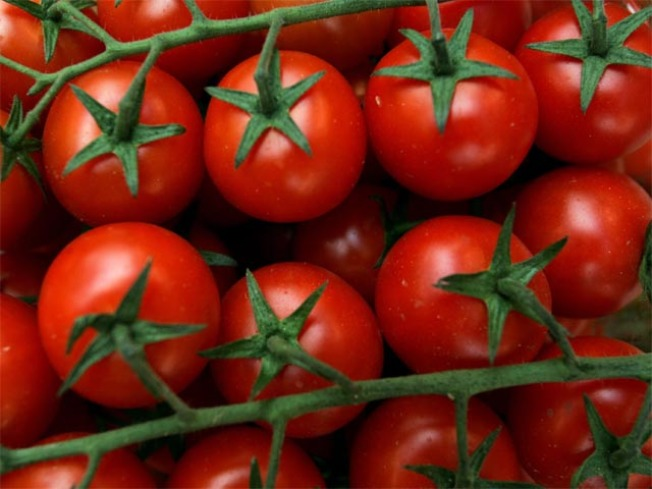 Exec Pleads Guilty in Tomato Price-Fixing Case