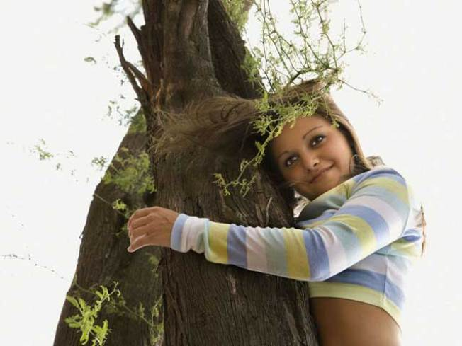 Have You Hugged a Tree Today?