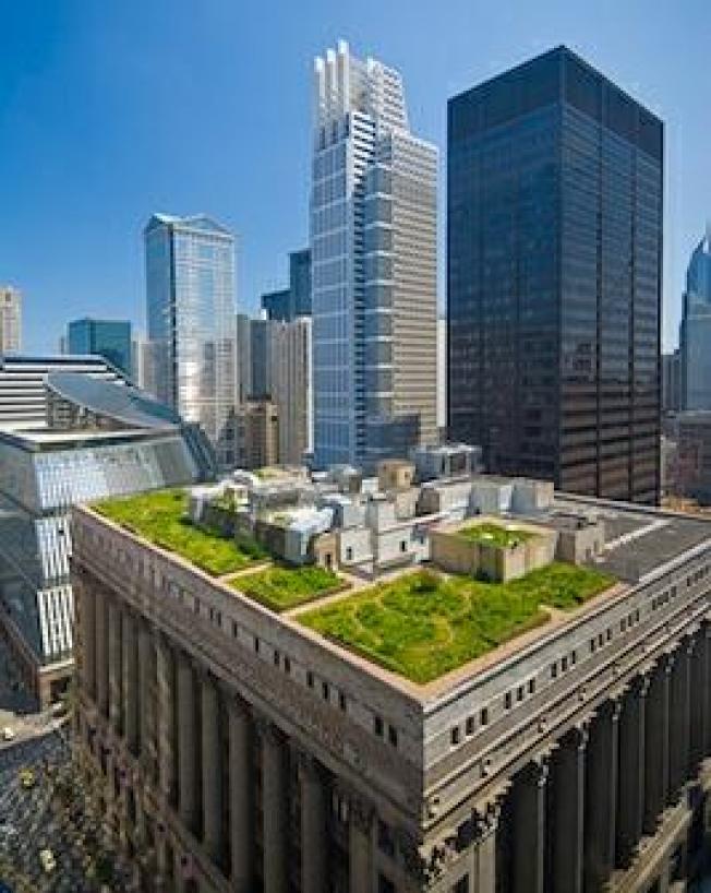 Chicago Sets Goals for a Cooler City