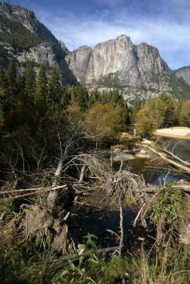 Yosemite Hiker Found Dead; 18th Fatality in Park