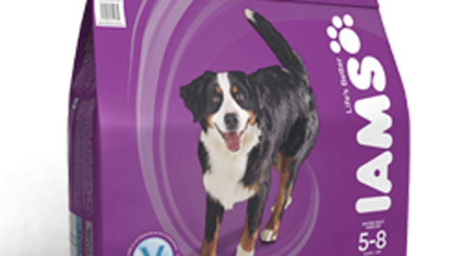 Iams Dog Food Recalled Over Salmonella Fears