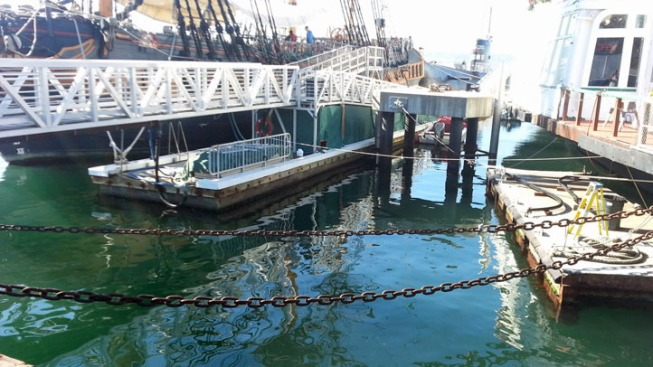 Baby Falls Into Harbor, Nearly Drowns