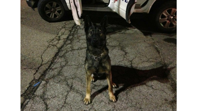 Retiring Ohio Police Officer Can't Keep His K-9 Partner