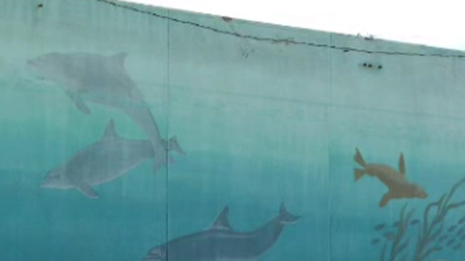 Ocean Life Mural to be Removed
