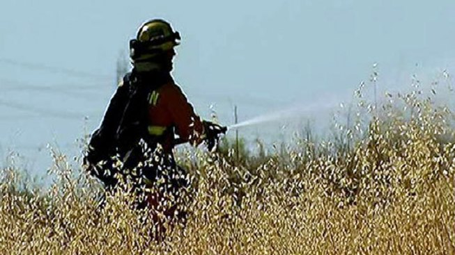 Anza Wildfire Burns 35 Acres