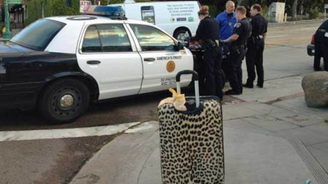Cheetah Print Luggage Helps ID Shooting Suspect