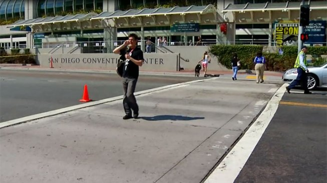 Twilight Fan Struck, Killed Waiting for Comic-Con