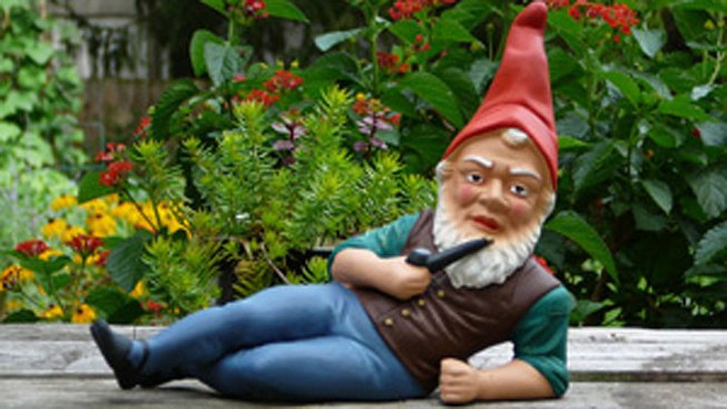 Guard That Garden Gnome