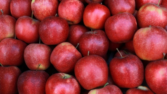 Apple Hill's Apple Season Is Rolling Our Way