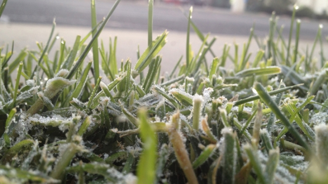 Frosty Cold Snap Continues